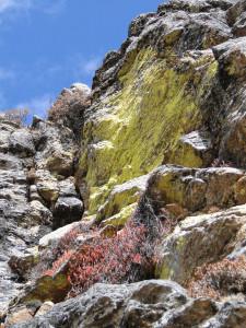 106 JP Couleurs de roche