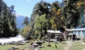 Pause sur la River Side  Langtang Khola